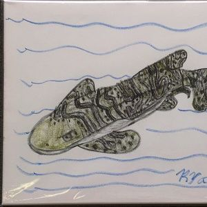 "Art by Ryan Wall Art - ""Zebra Shark"" on Stretched Canvas by Ryan"
